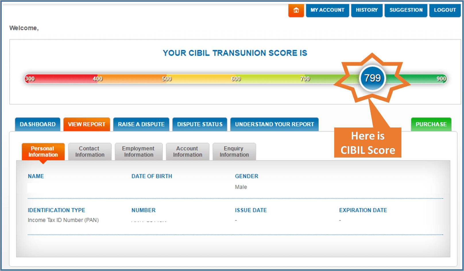 how to check cibil score